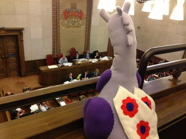Puffles scrutinising Cambridge City Council from the rafters