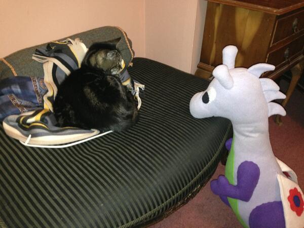 Puffles & Mog - bestest friends forreva!